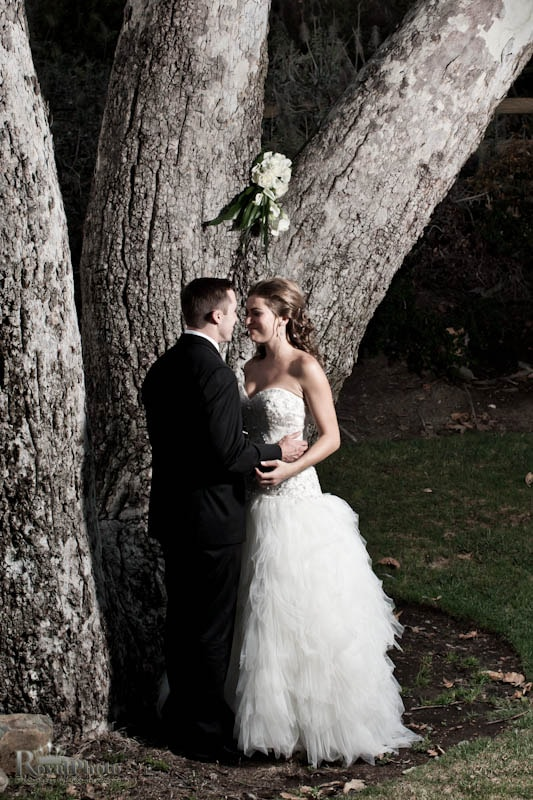 Newlyweds behind at tree